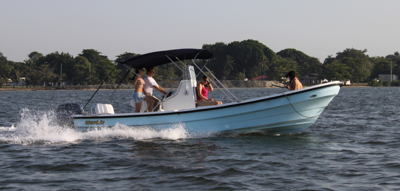 Barracuda 225